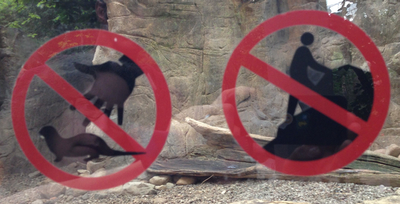 no-otters